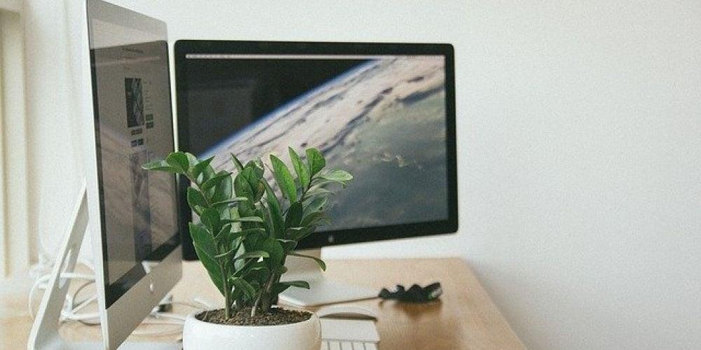 Incorporate Plants