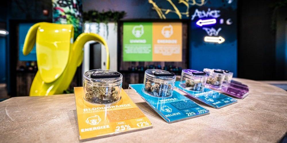 Cannabis smell testing jars