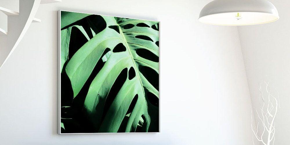 "Art Block Framed ""Montsera Deliciosa"" by Ivan Ballack"