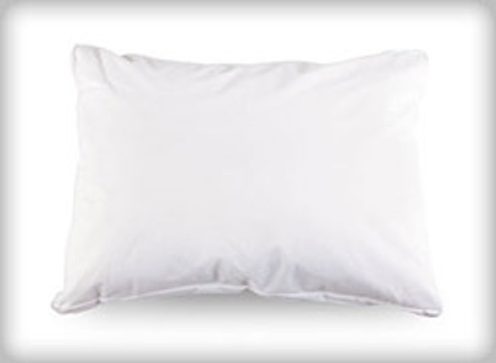 Bed Bug Travel Pillow and Cover