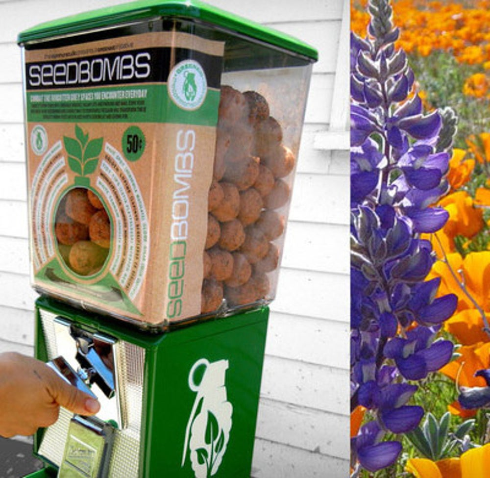 Flower Seeds From Greenaid's Seedbomb Vending Machines