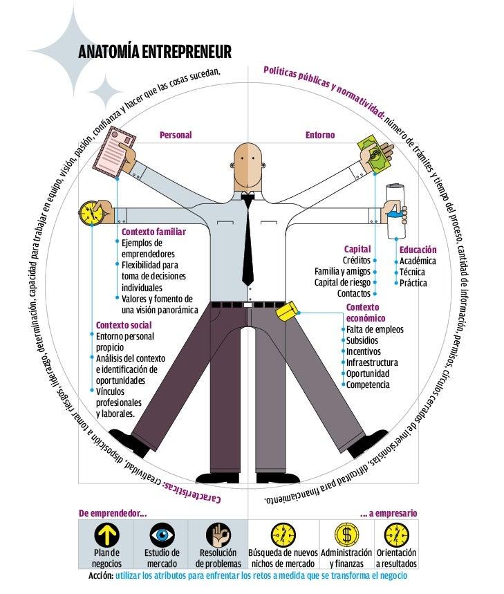 Anatomía entrepreneur (infografía)
