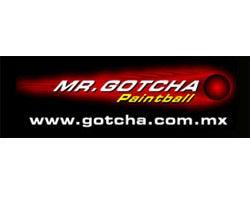Mr. Gotcha