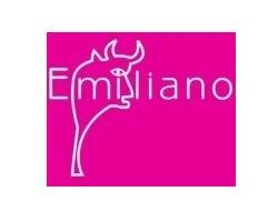 El Emiliano y sus Bigotes