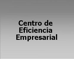 Centro de Eficiencia Empresarial