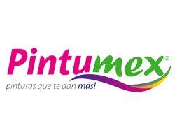 Pintumex