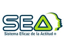 SEA, Sistema Eficaz de la Actitud