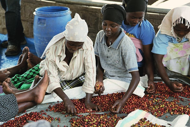 Making a Business of Premium Coffee for Premium Social Impact