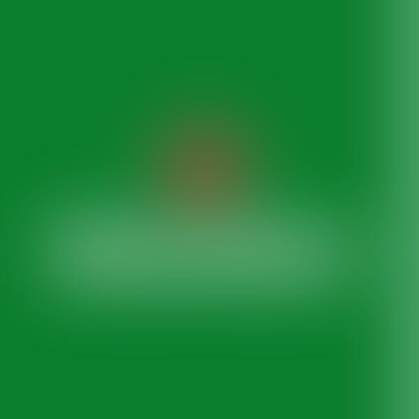 Heineken/Lagunitas