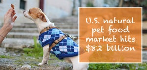 US natural pet food market hits $8.2 Billion