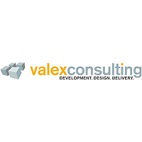 Valex Consulting, Inc.